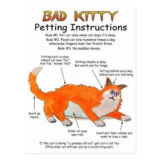 Gatinho mau que Petting instruções Cartão Postal