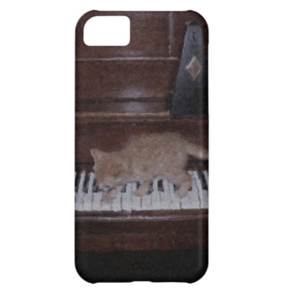 Gatinho nas chaves capa para iPhone 5C