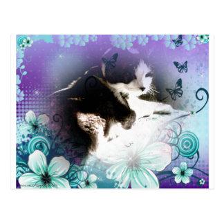 gatinho no cartão das flores cartão postal