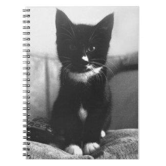Gatinho preto e branco cadernos espiral