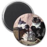 gatinhos dos gatos que jogam a pintura antiga do t ima