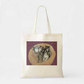 Gatinhos em um bolsa da cama do gato