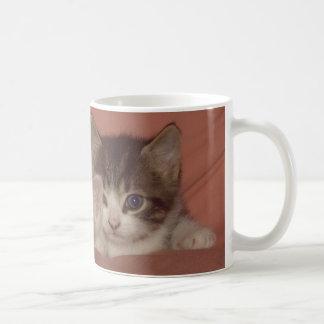 Gatinhos minúsculos caneca de café