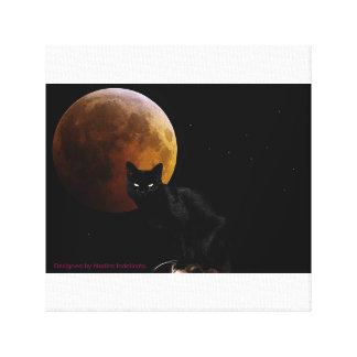 gato 12 X12 preto com a cópia dos moonCanvas do