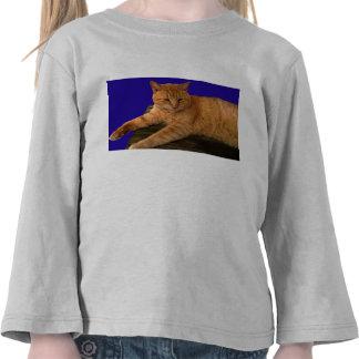Gato 8, a luva longa do miúdo tshirts