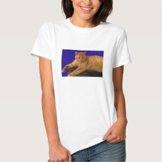 Gato 8, camisa das senhoras camisetas