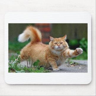 Gato alaranjado gordo grande mouse pad