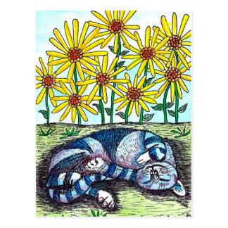Gato azul & cartão das flores do amarelo