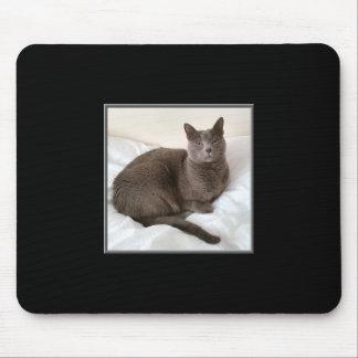 Gato azul Mousepad do russo