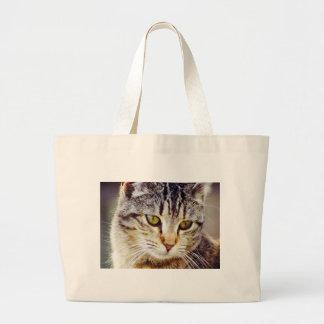 Gato Bolsa Para Compra