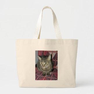 Gato Bolsas Para Compras