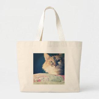 gato bolsas de lona