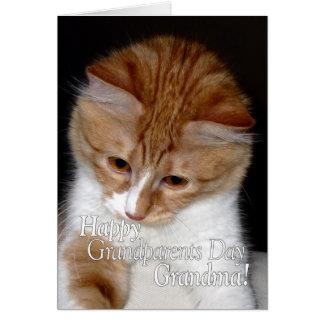 Gato bonito da avó feliz do dia das avós cartão comemorativo
