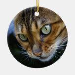 Gato bonito de Bengal Ornamento De Cerâmica Redondo