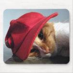 Gato bonito que veste o boné vermelho Mousepad