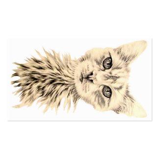 Gato branco no cartão de visita