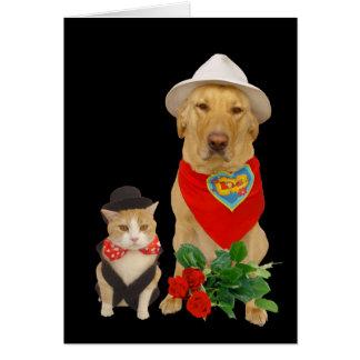 Gato & cão/namorados bonitos, engraçados do cartão comemorativo