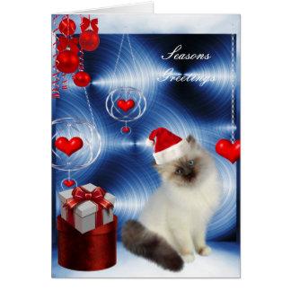 Gato cinzento branco macio do Natal do cartão