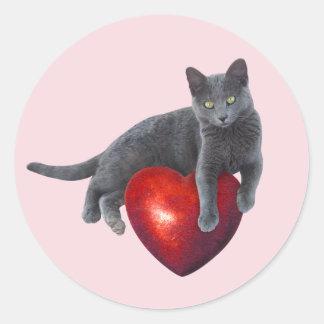 Gato cinzento com etiqueta vermelha do coração