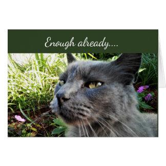 Gato Crabby com o cartão de nota engraçado da