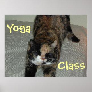 Gato da ioga pôster