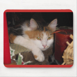Gato de chita bonito Mousepad