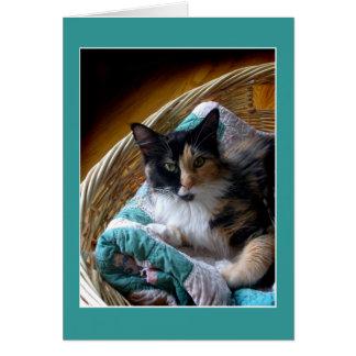Gato de chita em um cartão do cumprimento ou de