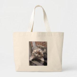 Gato de gato malhado feroz listrado brincalhão bolsas