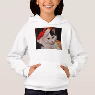 Gato de Papai Noel - Feliz Natal - gato do animal