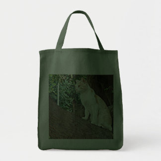 Gato de Parque Kennedy Bolsa Para Compra