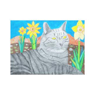 Gato de Stripey nas canvas das montanhas de San