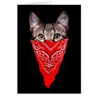 gato do gângster - gato do bandana - grupo do gato cartão comemorativo