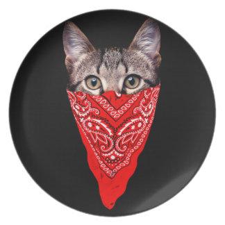 gato do gângster - gato do bandana - grupo do gato pratos
