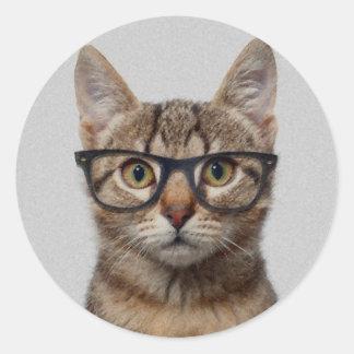 Gato do geek adesivo