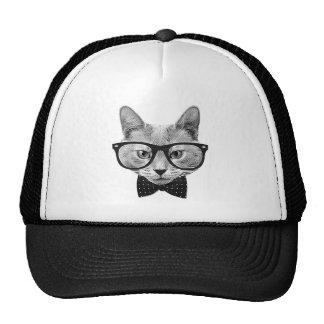 Gato do hipster do vintage boné