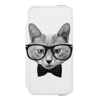 Gato do hipster do vintage