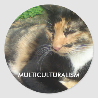 Gato do multiculturalismo adesivo