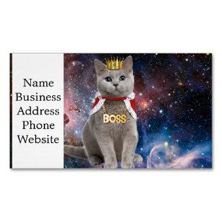 gato do rei no espaço