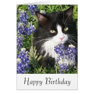 Gato do smoking do cartão de aniversário em
