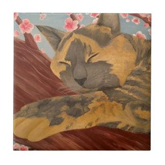 Gato do sono da flor de cerejeira