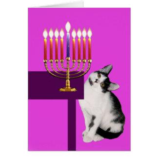 Gato e cartão cor-de-rosa de Menorah Hanukkah