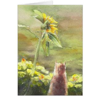 Gato e girassol cartão