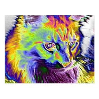 Gato elétrico cartao postal