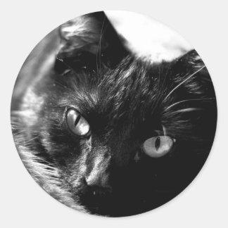 Gato em etiquetas preto e branco adesivo redondo