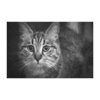 Gato em preto e branco impressão em canvas