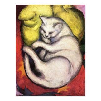 Gato em um coxim amarelo cartão postal