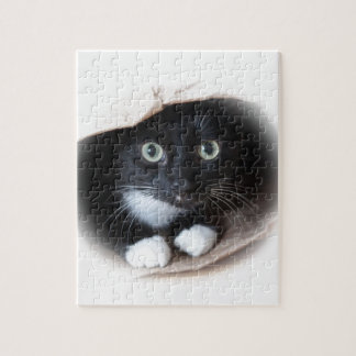 Gato em um saco quebra-cabeças