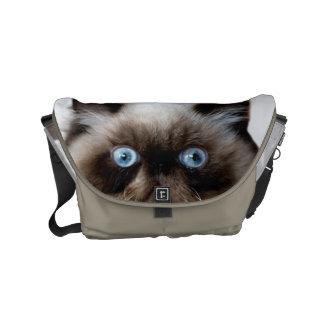 Gato engraçado bolsas mensageiro
