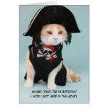 Gato engraçado customizável do pirata cartoes