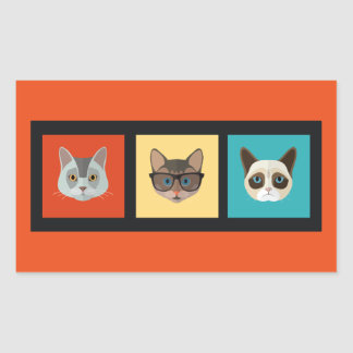 Gato esperto Cat6 triste do gato liso Adesivo Retangular